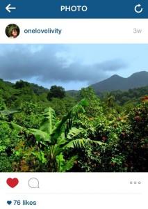 Onelovelivity instagram belles