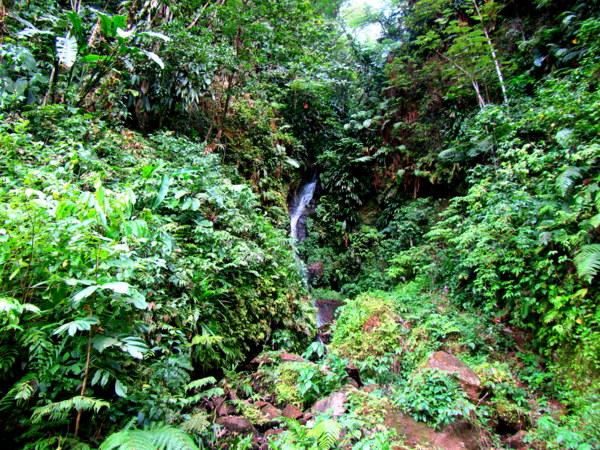 Kabwit Falls.